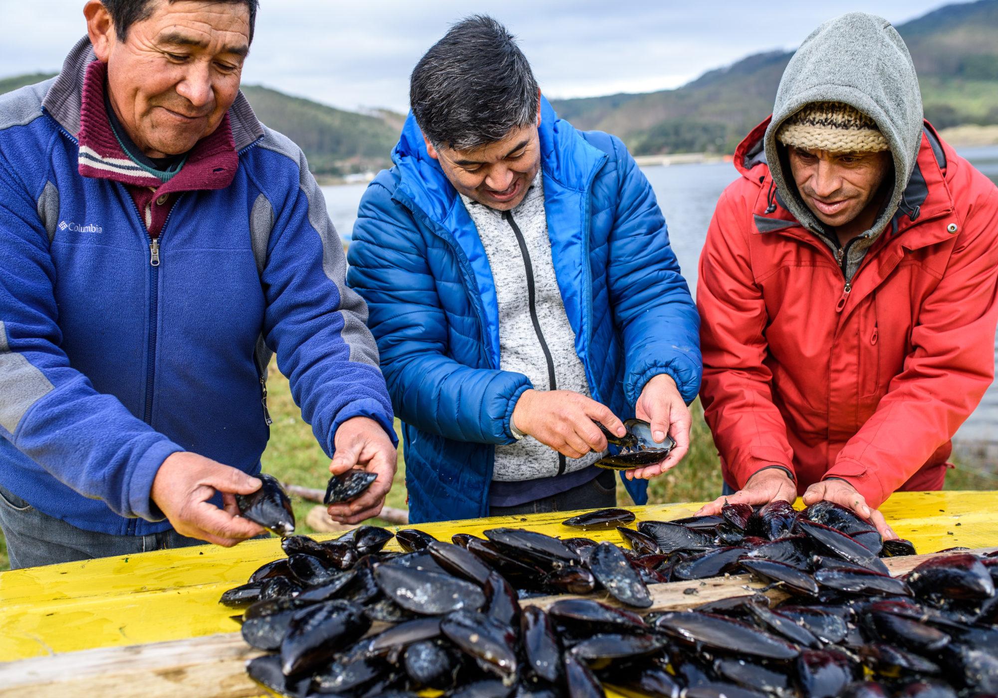 Diversificación de la pesca artesanal y turismo comunitario en la Región de Los Ríos