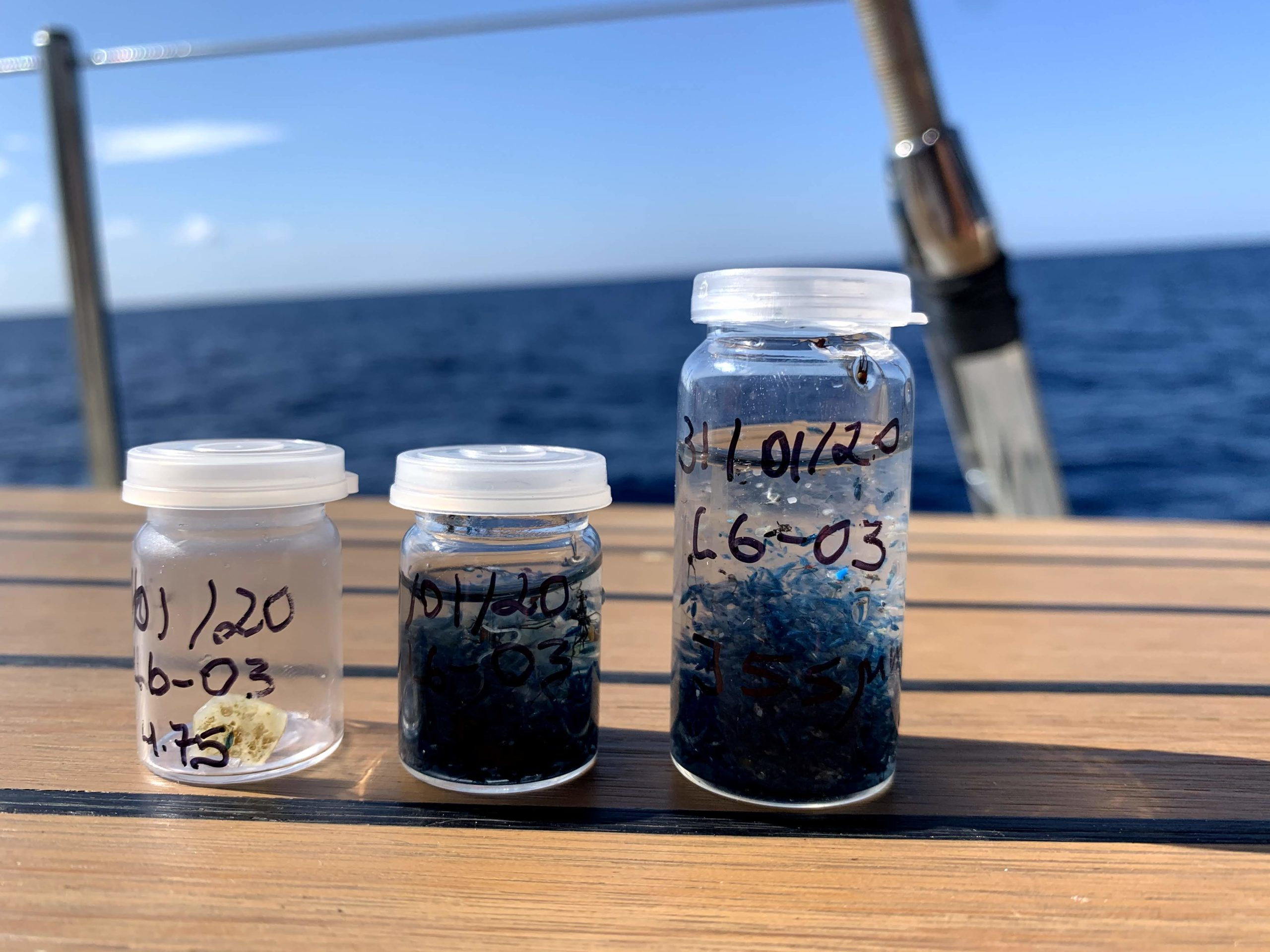 Microplásticos encontrados en el mar