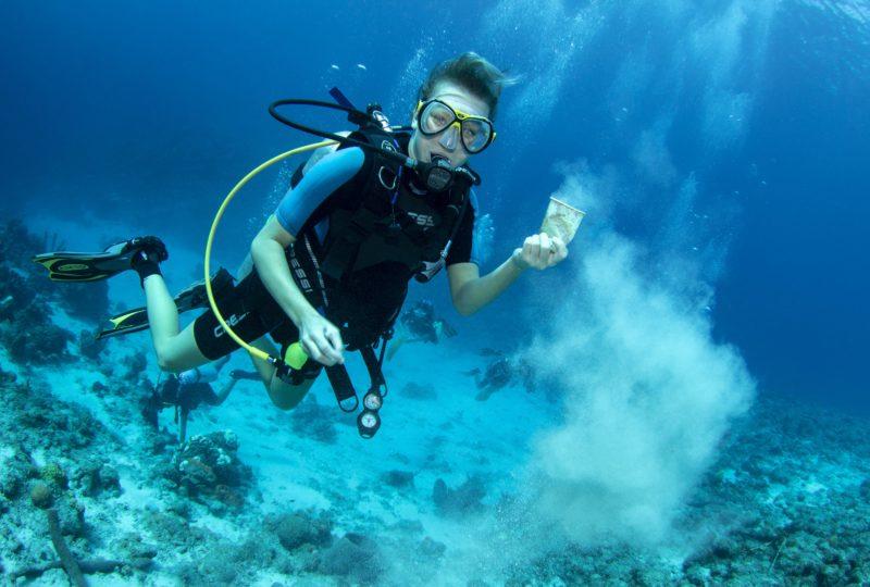 Buceos de limpieza: recogiendo la basura que termina en el océano