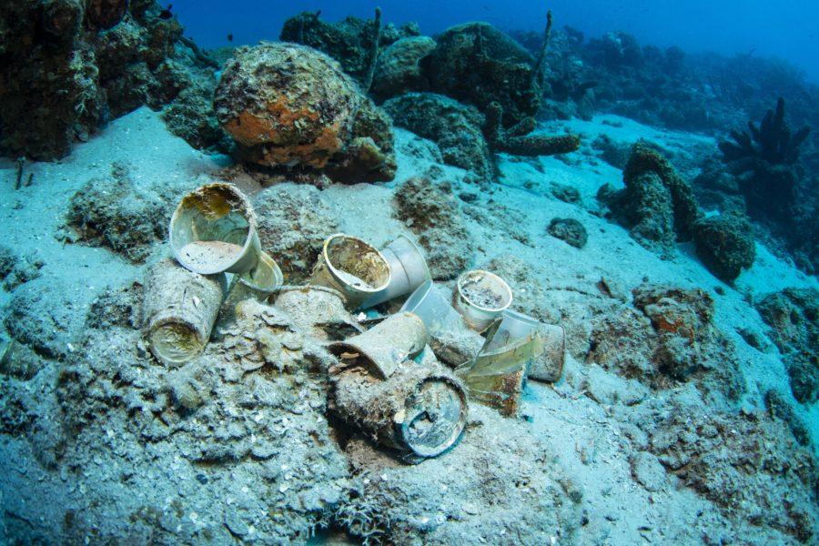 vasos plasticos en el oceano