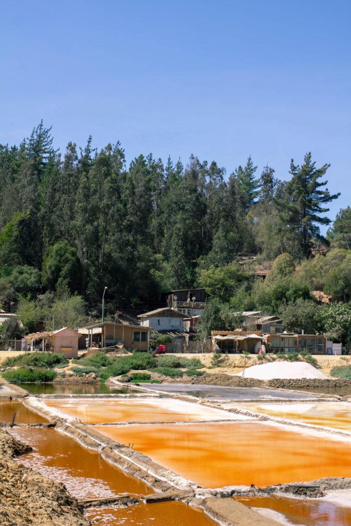 Salinas de Cáhuil al costado del camino.