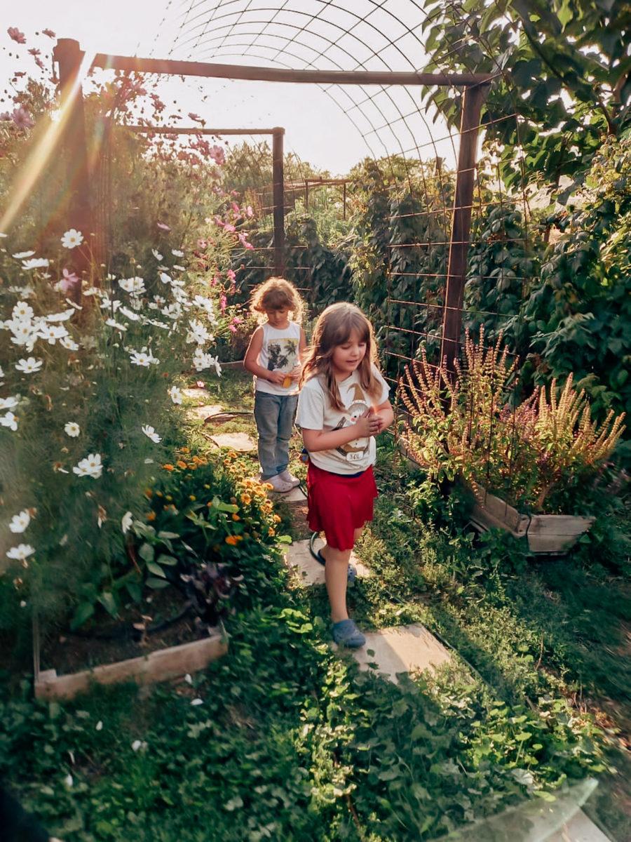 Niños en el huerto