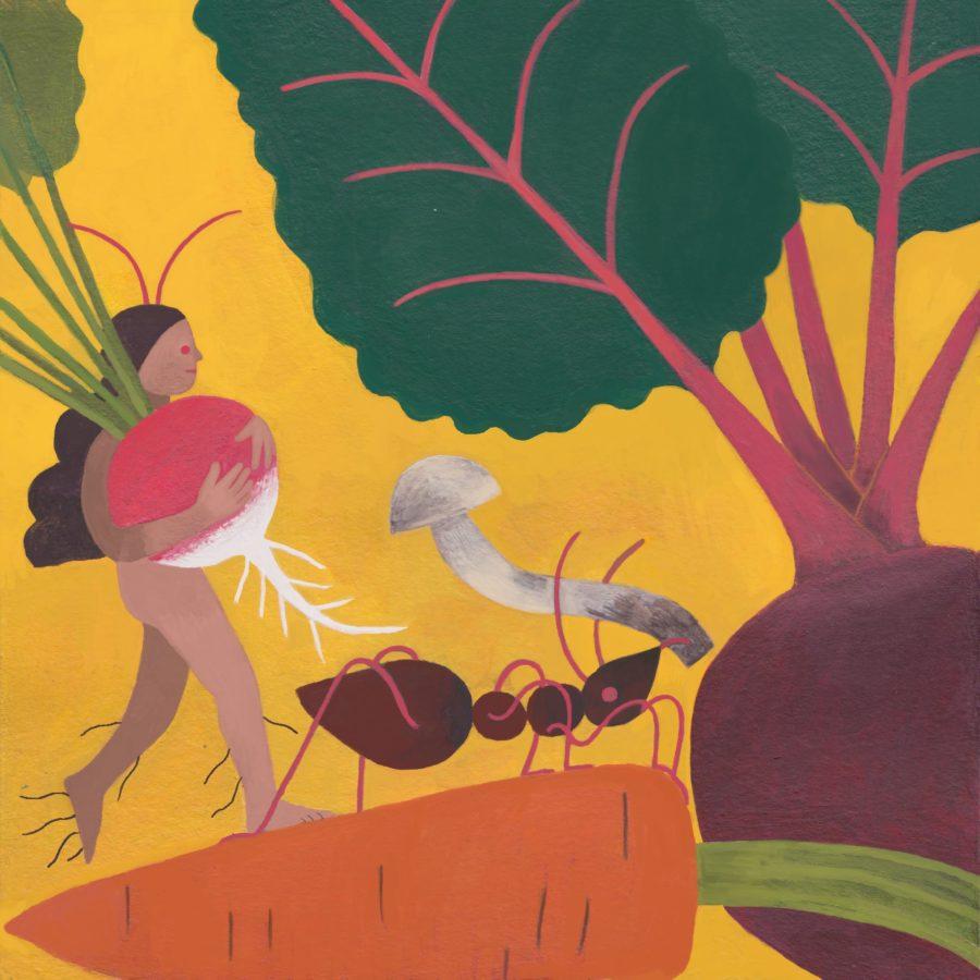 El huerto y su huertero, ciclo sin fin. Por Francisca Alvarez