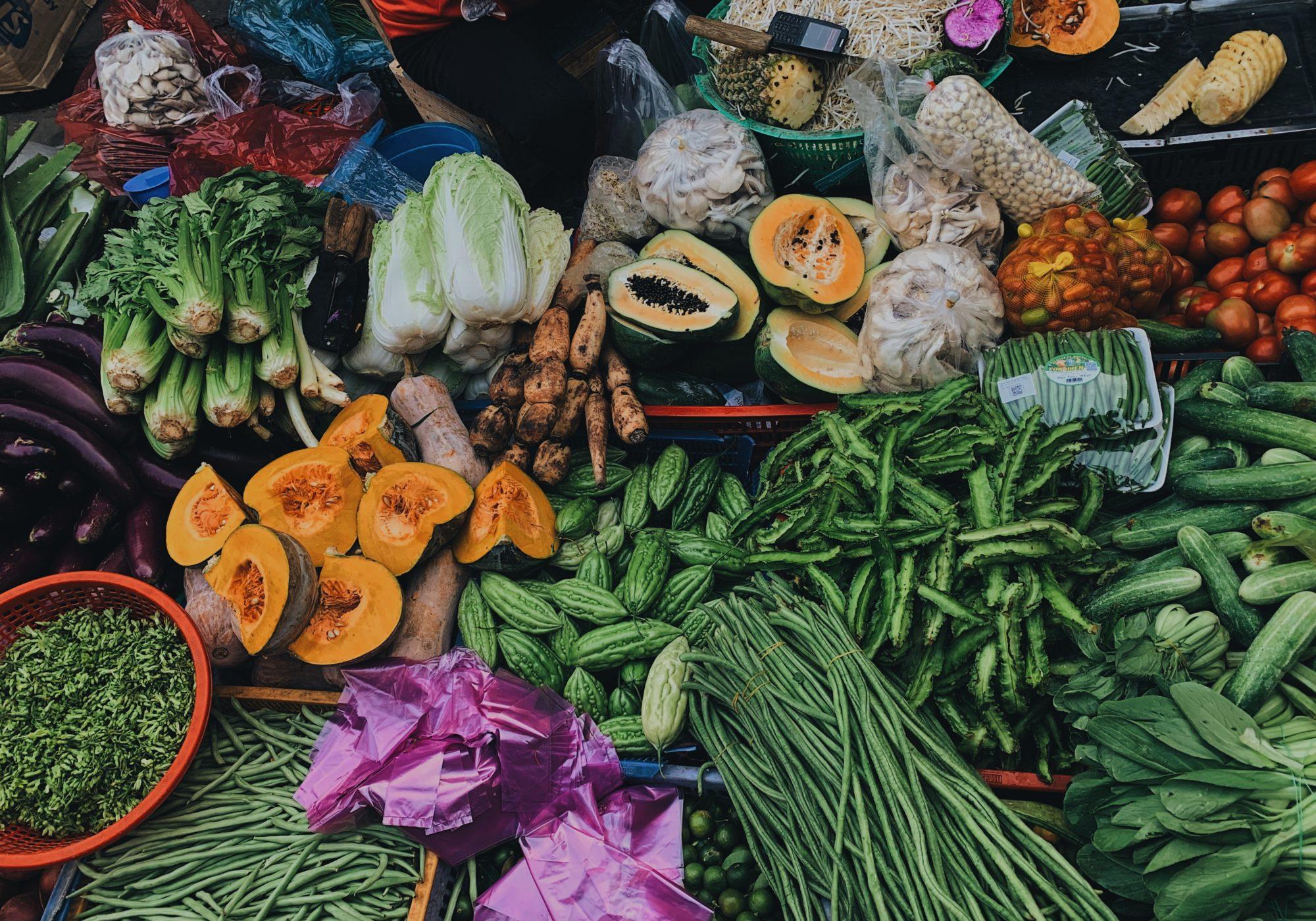 Derecho a la alimentación en la Nueva Constitución