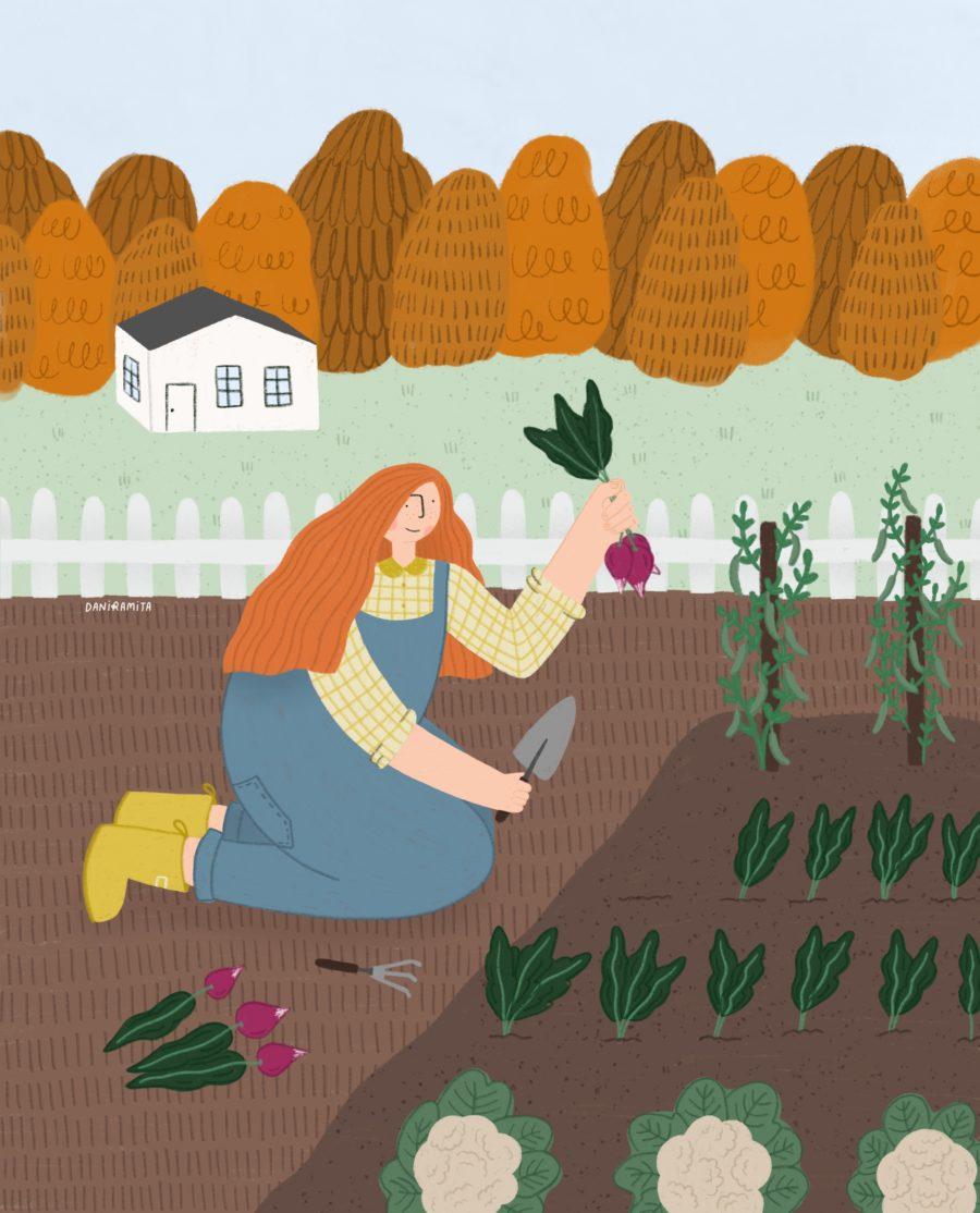 Cultivar orgánico, por Daniela Ramírez